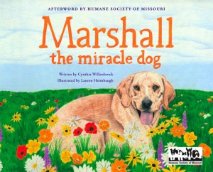"""Marshall The Miracle Dog"""